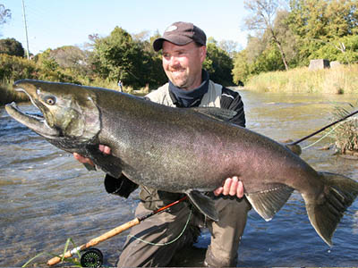 Ontario Fly Records- Salmon Fishing